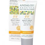 all-in-one-beauty-balm-sheer-tint-spf30-2-fl-oz-by-andalou-naturals