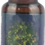 Flower Essence Services Herbals/Herbal Extracts – Dill Dropper – 0.25