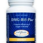 dmgb15plus-60-vegetarian-capsules-by-enzymatic-therapy