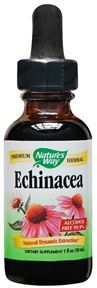echinacea-alcohol-free-1-oz-by-natures-way