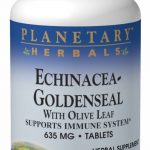 Planetary Herbals Herbals/Herbal Extracts – Echinacea Goldenseal with