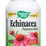 echinacea-purpurea-herb-400-mg-100-capsules-by-natures-way