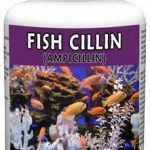 Thomas Labs Fish Health & Wellness – Fish-Cillin 250 mg – 100 Capsules