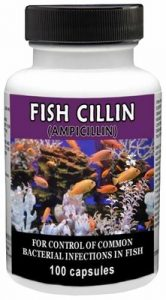 fish-cillin-250-mg-100-capsules-by-thomas-labs