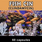 Thomas Labs Fish Health & Wellness – Fish-Cin 150 mg – 60 Capsules
