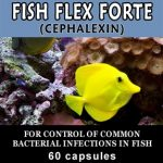 Thomas Labs Fish Health & Wellness – Fish-Flex Forte 500 mg – 30