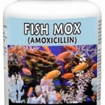Thomas Labs Fish Health & Wellness – Fish-Mox 250 mg – 30 Capsules