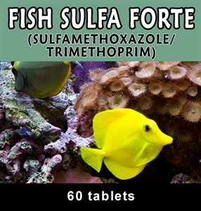 fish-sulfa-forte-60-count-by-thomas-labs