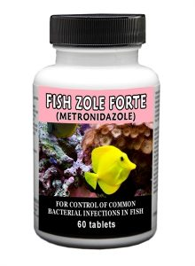 fish-zole-forte-500-mg-60-count-by-thomas-labs