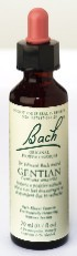 flower-essence-gentian-20-ml-by-bach-flower-remedies