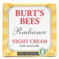 night-cream-with-royal-jelly-radiance-20-oz-55-grams-by-burts-bees