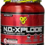 BSN Exercise Stamina – N.O.-Xplode Pre-Workout Igniter Fruit Punch