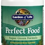 Garden of Life General Health – Perfect Food – Green label – 300