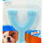 puppy-chew-wishbone-chew-toy-petite-dogs-up-to-15-lbs-7-kg-blue-chicken-1-count-by-nylabone