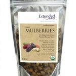 Extended Health Snacks – Raw Mulberries – 6 oz