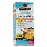 Nature's Answer General Health – Sambucus Kid's Formula, Natural