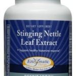 Enzymatic Therapy Respiratory Support – Stinging Nettle Leaf Extract –