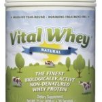 vital-whey-natural-flavor-21-oz-600-grams-by-well-wisdom-proteins